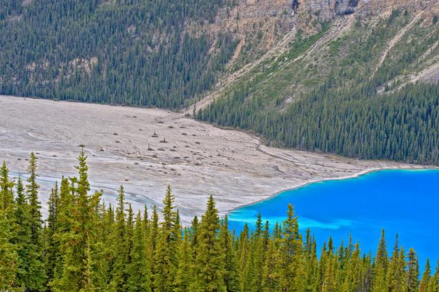 Canada Spring 2010 - Banff NP - Peyto Lake - 20100616.005 (ea) - 0006 [S][640x426]